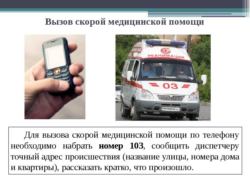 Вызываем «скорую». что происходит, когда мы набираем номер «103»   здоровье   аиф аргументы и факты в беларуси