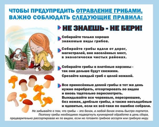 С какого возраста можно шампиньоны детям • шампиньоны