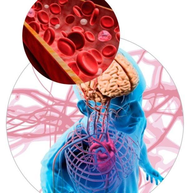 Гипоксия: виды и лечение кислородной недостаточности