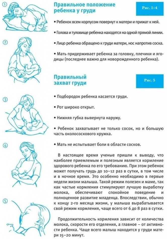 Грудное вскармливание по требованию  . налаживание грудного вскармливания