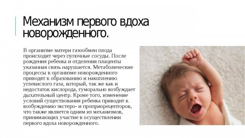 Почему ребенок часто дышит?