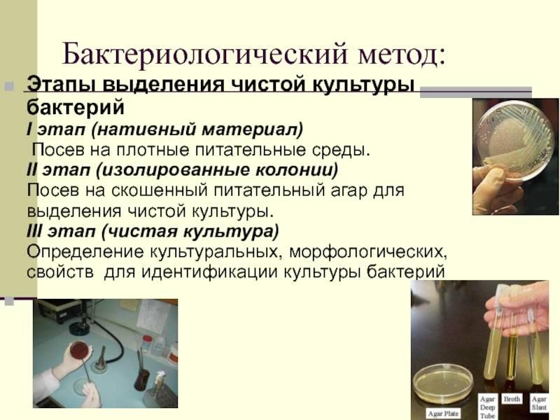 Методические рекомендации по бактериологическому контролю грудного молока