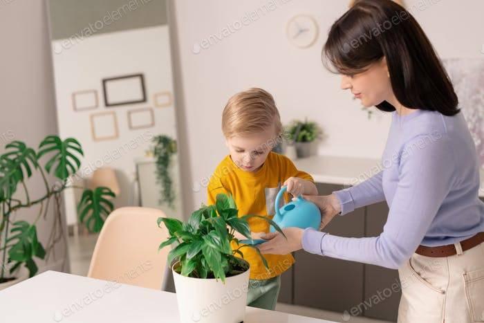 Как приучить ребенка к порядку?  . воспитание школьника