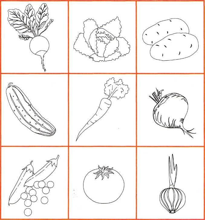 Тема недели «фрукты»