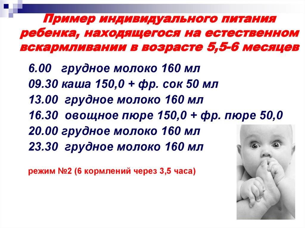 Сколько по времени кормить новорожденного грудным молоком: принципы успешного грудного вскармливания