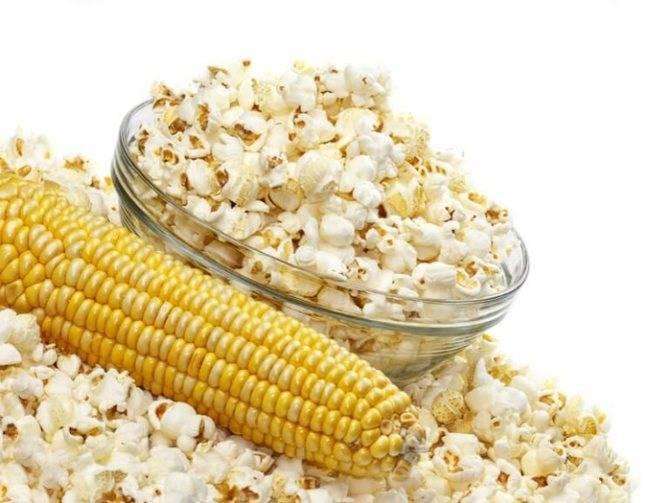 Можно ли кукурузу при грудном вскармливании | кукуруза - польза для молодых мам