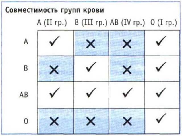Совместимость групп крови: для зачатия ребенка, таблица, резус-фактор, при переливании, 1, 2, 3, 4, человеку со ii, схема, положительная, несовместимые, влияет ли
