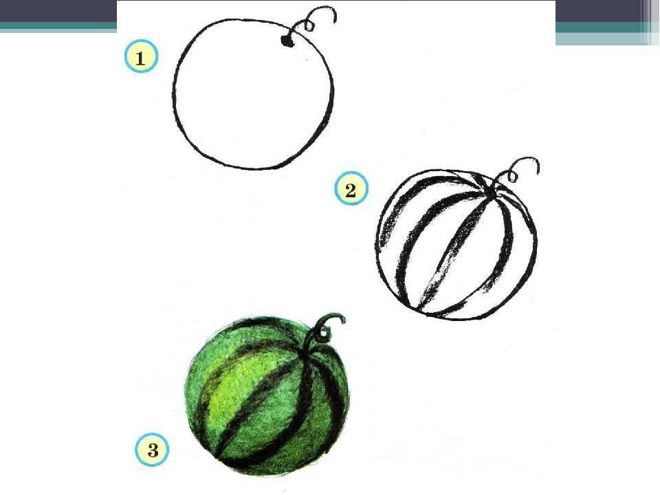 Нод по изобразительной деятельности «фрукты в разрезе» для детей 6–7 лет