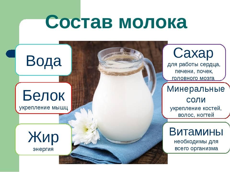 Что такое лактация и состав материнского молока