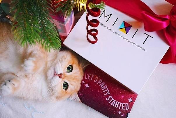 20 подарков для детей и подростков на новый год