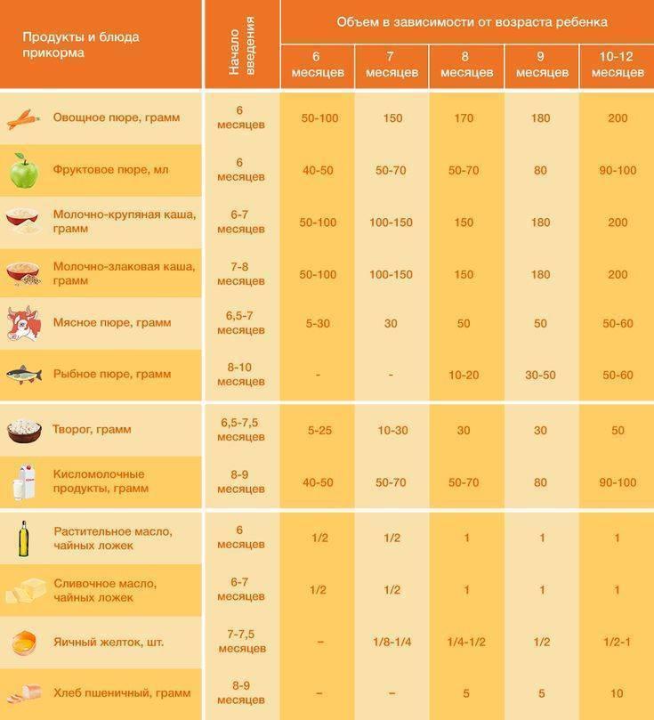 Схема прикорма с 6 месяцев по дням | блог дочки-сыночки