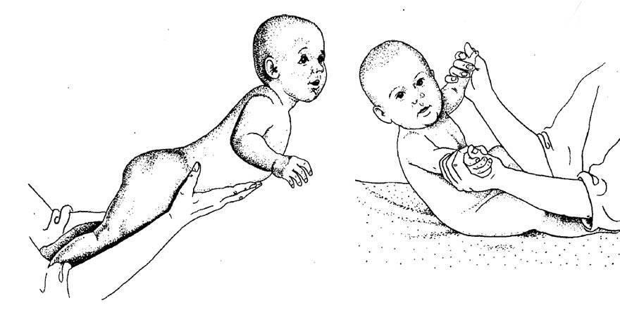Гимнастические упражнения и массаж детей от 6 до 9 месяцев - новорожденный. ребенок до года
