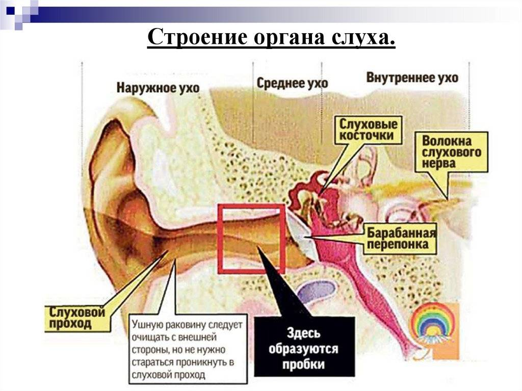 Почему идет кровь из уха?