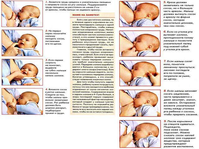 Как отучить ребенка кусать грудь при кормлении?
