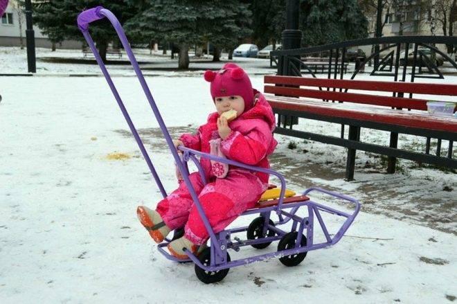 Как выбрать санки-коляску для новорожденных: лучшие модели для детей разных возрастов