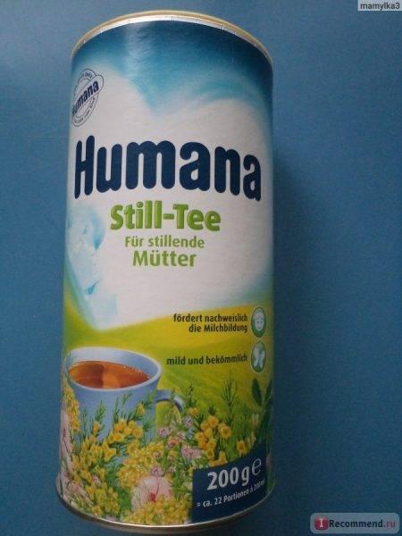 Чай хумана (humana) для улучшения лактации кормящей матери