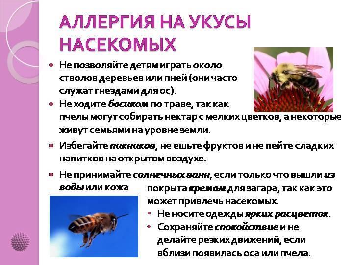 Пройти диагностику аллергии на укусы насекомых и получить рекомендации по лечению в москве