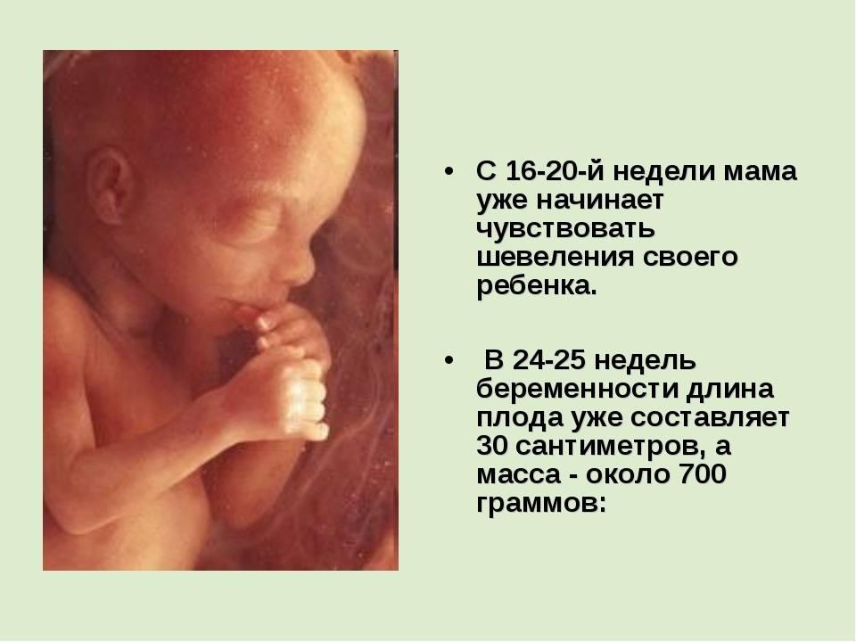 Когда плод начинает шевелиться в животе: на каком сроке ребенок уже может пинаться при первой, второй и третьей беременности? | чудо в животике
