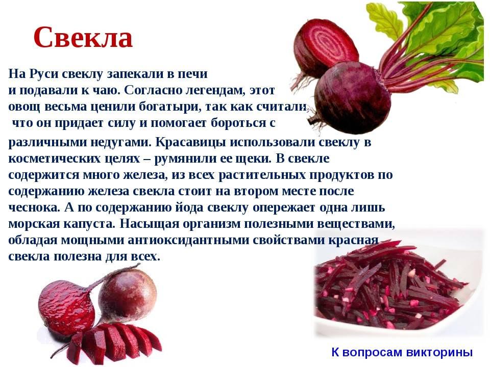 Железо в крови. 10 продуктов, которые повысят гемоглобин зимой | общество | аиф красноярск