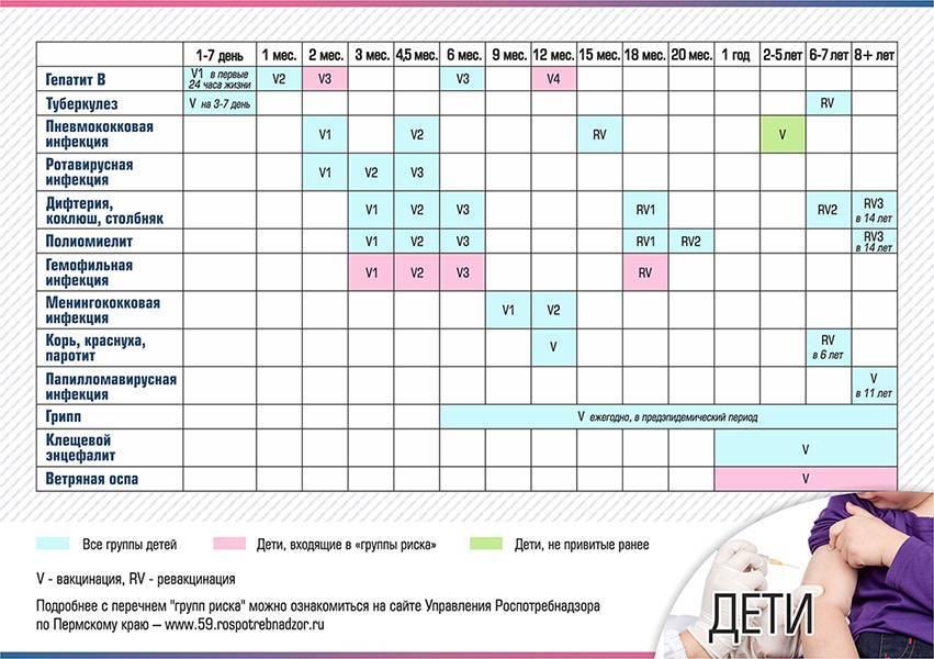 Календарь прививок: национальные особенности