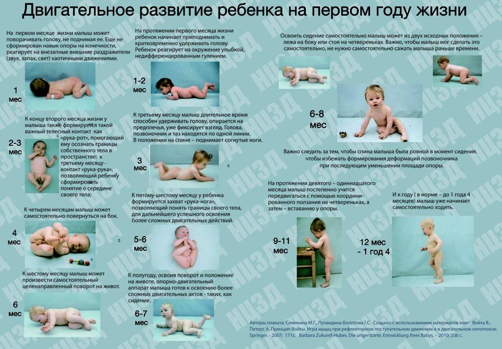 Что должен уметь ребенок в 2 года. подробное описание физического и эмоционального развития ребенка в 2 года. - автор екатерина данилова - журнал женское мнение