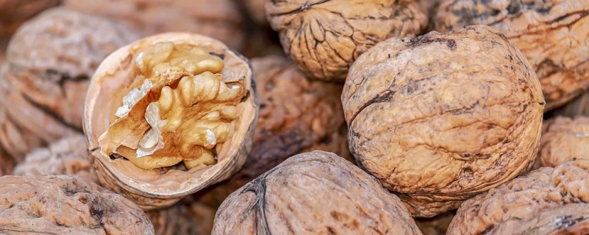 Грецкие орехи: польза и вред