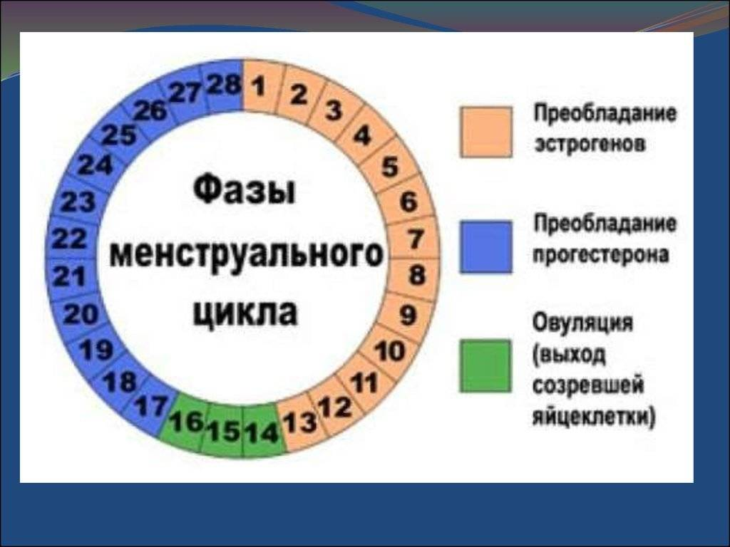 Как понять сколько дней идут месячные. сколько дней в норме должны идти месячные у девушек