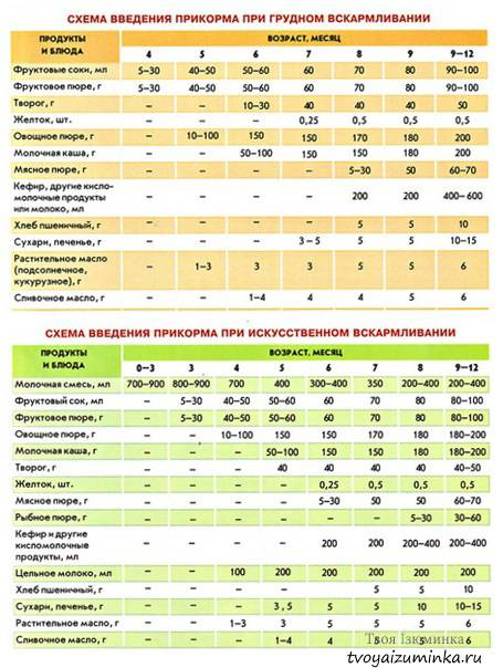 Кормление ребенка по месяцам: питание детей до года (норма + таблица)
