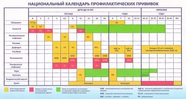 Календарь профилактических прививок РФ
