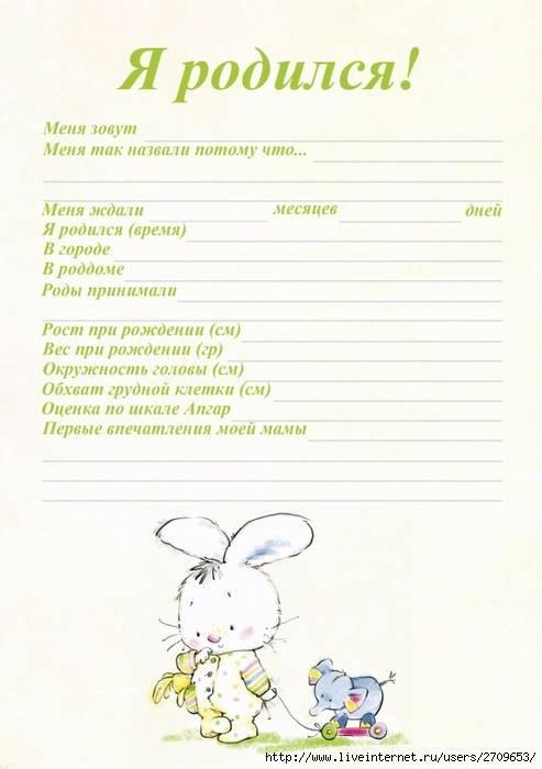 Паспорт мплыша скачать и распечатать | yurnd.ru