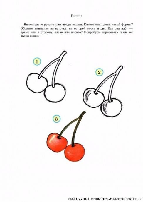 Учимся рисовать фрукты и овощи, как рисовать овощи