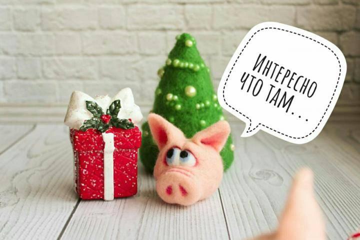 Подарки с символикой 2019 года свиньи: лучшие сувенирные подарки