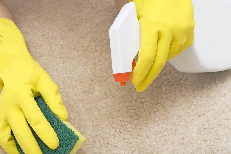 Как убрать с дивана запах мочи в домашних условиях: 20 лучших средств и методов