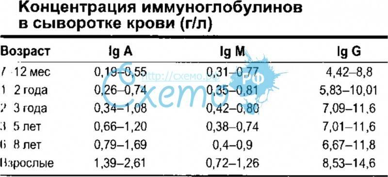 Суммарные иммуноглобулины e (ige) в сыворотке