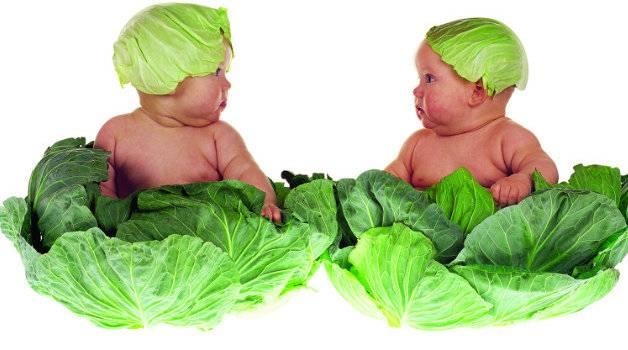 Здоровье ребенка от 1 до 2 лет