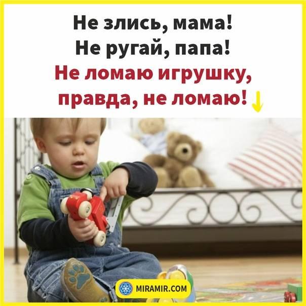 Как реагировать, если у ребёнка отбирают чужую игрушку
