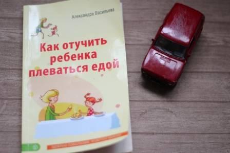 Как отучить собаку грызть все подряд: вещи, мебель, обувь и другие предметы, правила воспитания и коррекции поведения