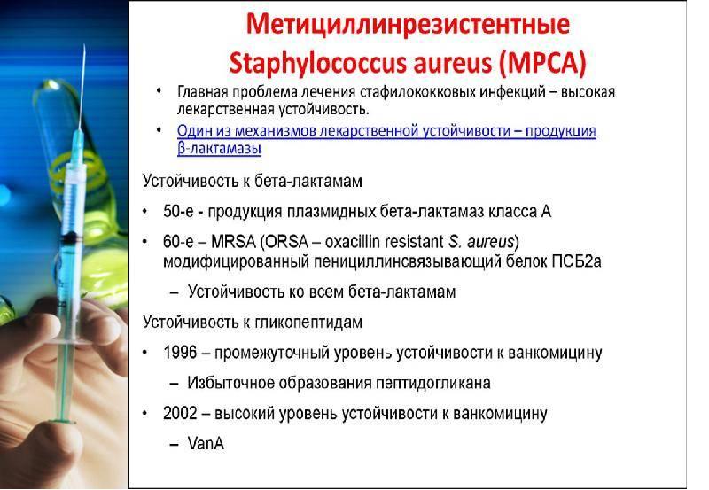 Золотистый стафилококк в кале у ребенка: симптомы