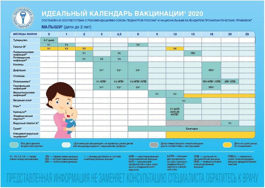 Календарь прививок для детей до 1 года и старше