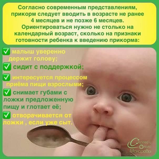 Готов ли ребенок к прикорму? дополнительные признаки готовности