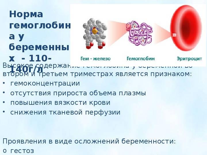 Значимость иммунологических методов в оценке функциональной активности тромбоцитов у беременных с тромбоцитопенией » библиотека врача