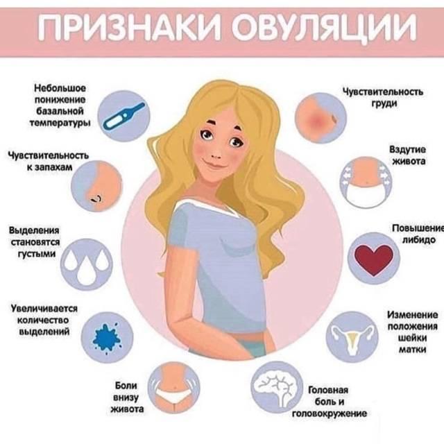 Болит грудь (масталгия): почему болят молочные железы, лечение - напоправку – напоправку