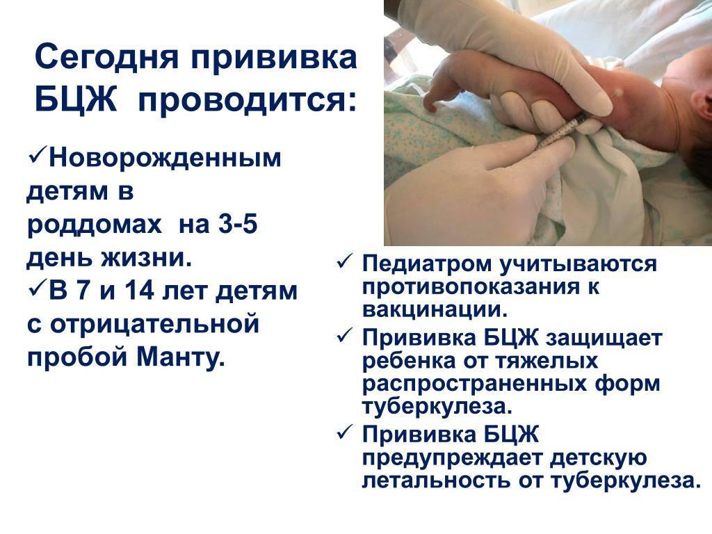 Какие прививки делают в роддоме новорожденным в 2021 году