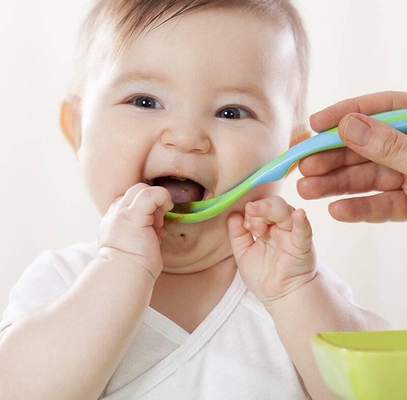 С чего начинать знакомство грудничка с новыми продуктами: правила первого прикорм и советы родителям