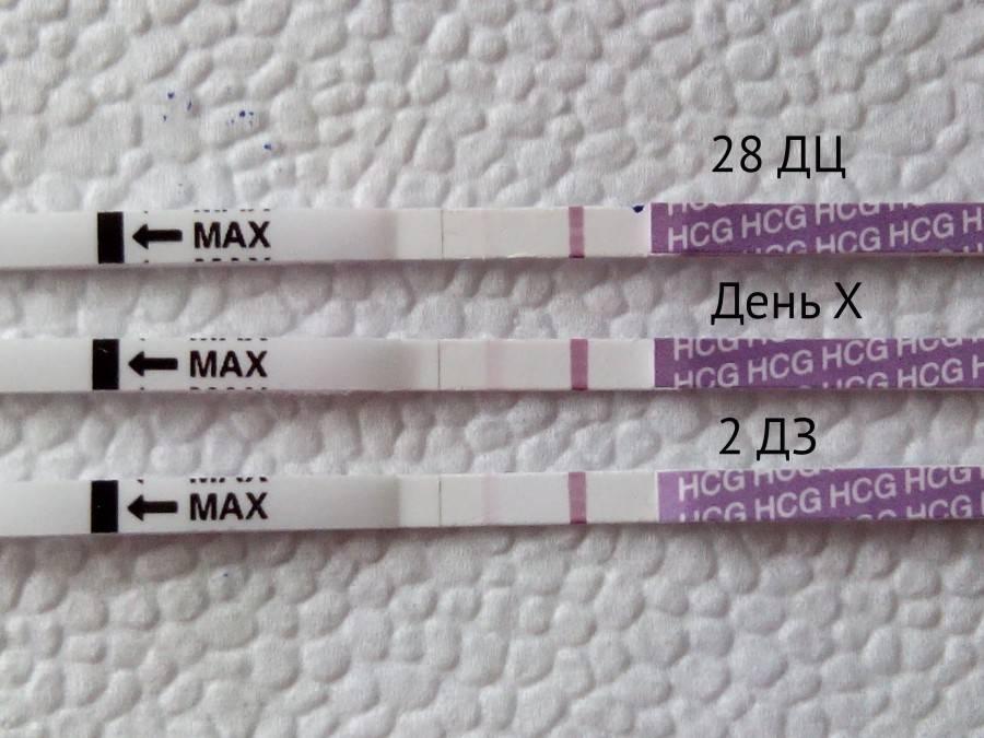 Признаки беременности и ранняя диагностика: все методы
