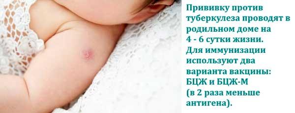 Какие прививки ставят в роддоме?
