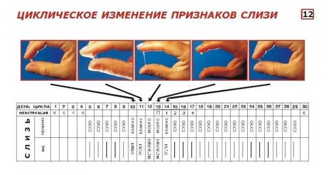 Гормональные нарушения у женщин: 10 предупреждающих знаков | университетская клиника
