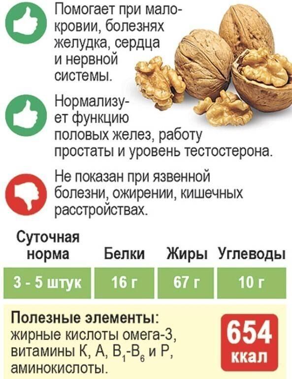 Польза и вред грецких орехов для беременных и кормящих мам