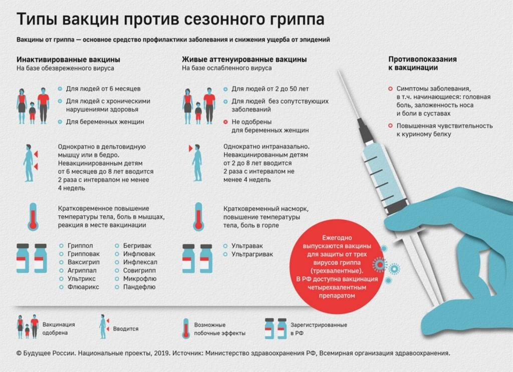 Какие можно сделать прививки против гриппа 2020-2021 детям и взрослым (где сделать бесплатно, виды вакцин от гриппа)