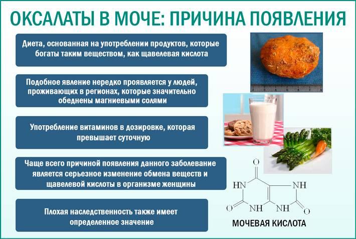 Кристаллурия — соли в моче | университетская клиника